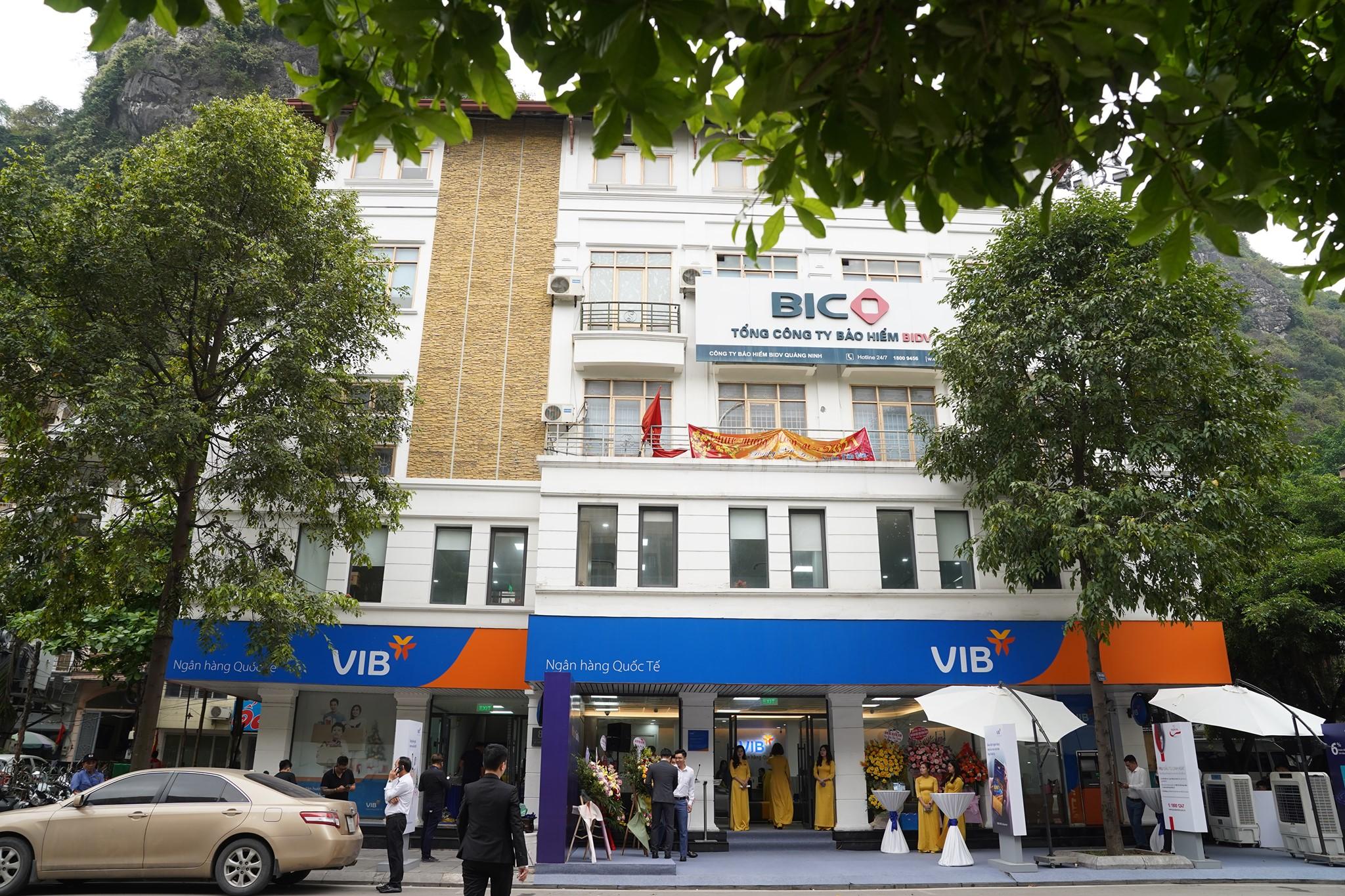 VIB dự kiến phát hành gần 500 triệu cổ phiếu, tăng vốn điều lệ lên hơn 15.000 tỷ đồng - Ảnh 1.