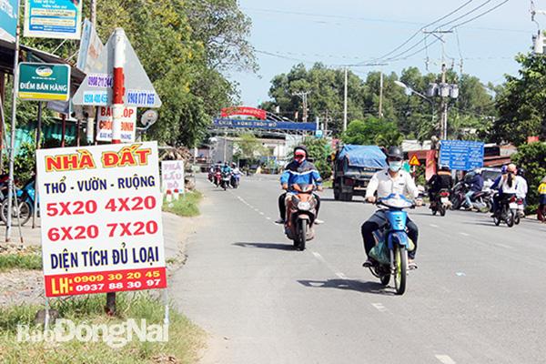 Giá đất nhiều nơi tại Đồng Nai tăng 5 - 6 lần - Ảnh 1.
