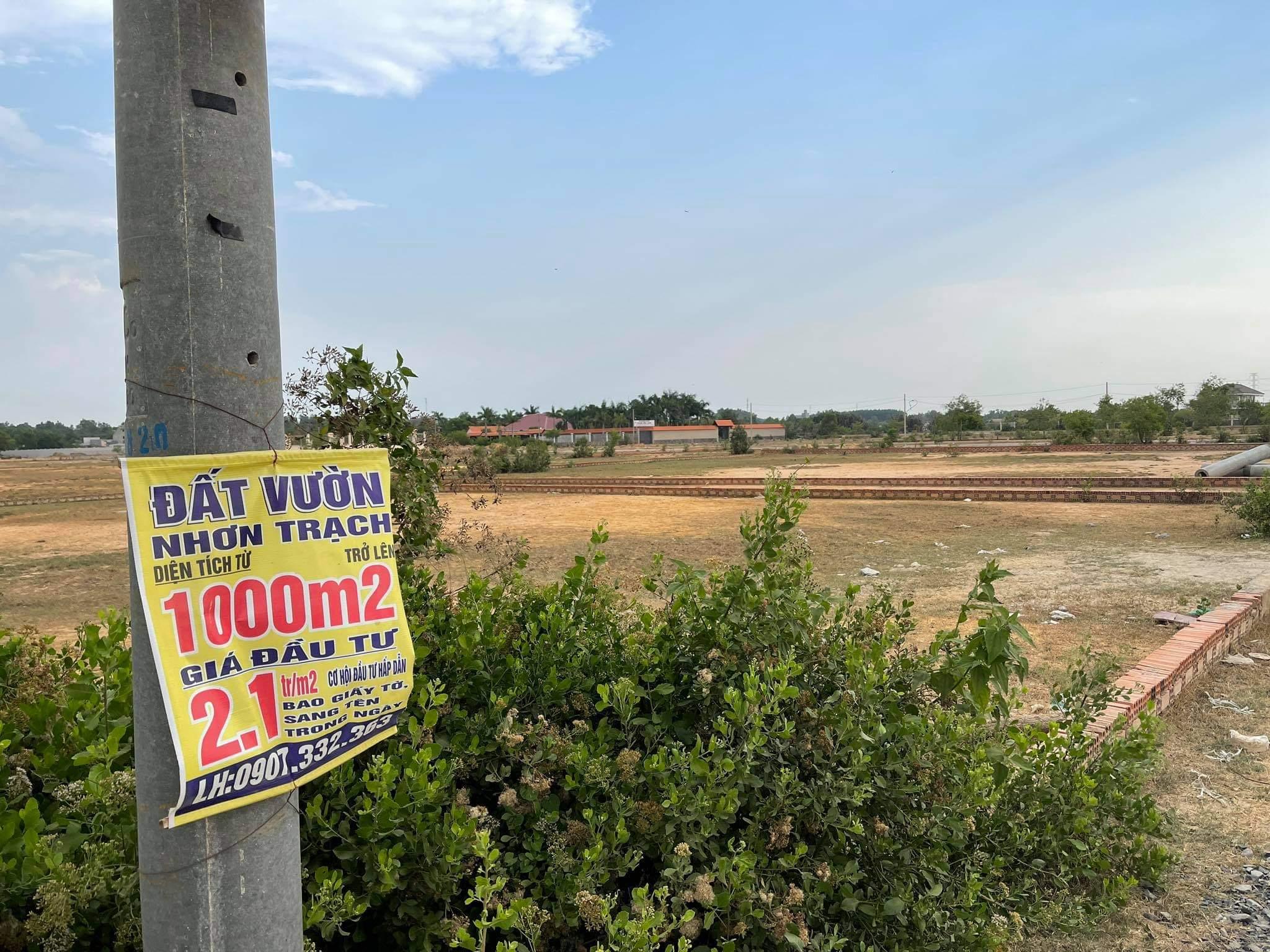 Bộ Xây Dựng: Giao dịch đất nền thực tế rất thấp, giới đầu cơ 'lướt cọc' là chính - Ảnh 1.