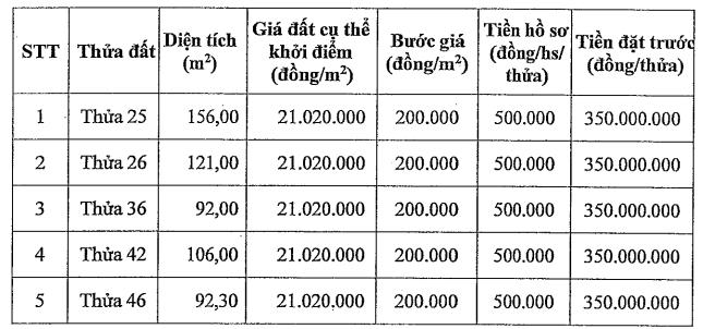 Đấu giá 5 thửa đất tại Đặng Xá, Gia Lâm, Hà Nội, khởi điểm 21 triệu đồng/m2 - Ảnh 1.