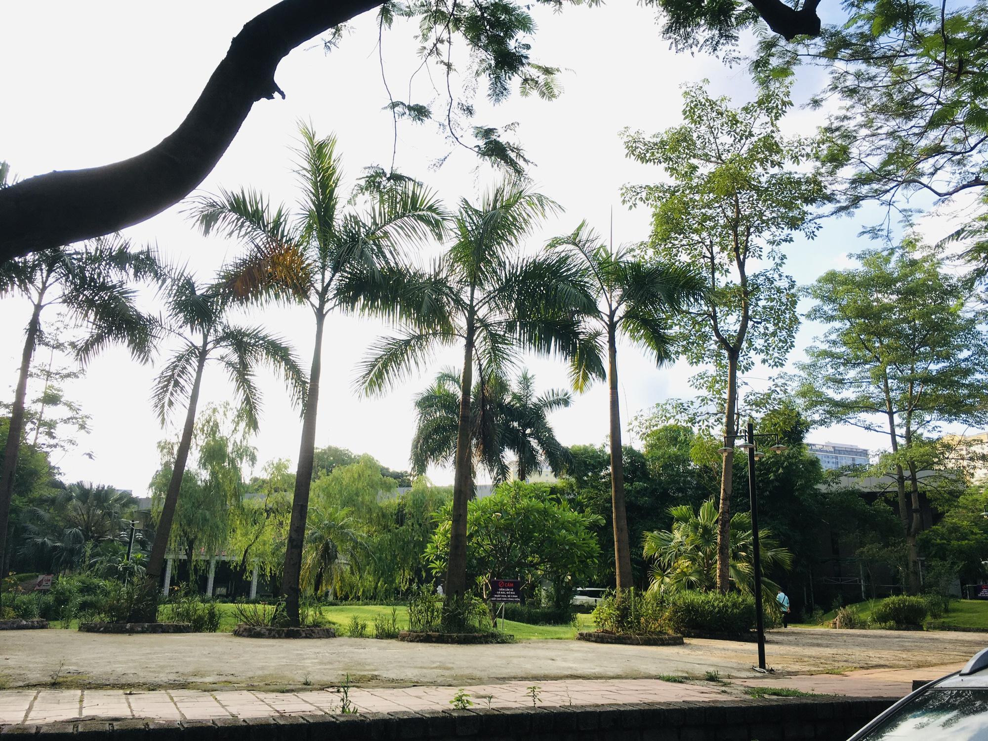 Những khu dính quy hoạch phường Trung Hòa, Cầu Giấy, Hà Nội (phần 3) - Ảnh 8.