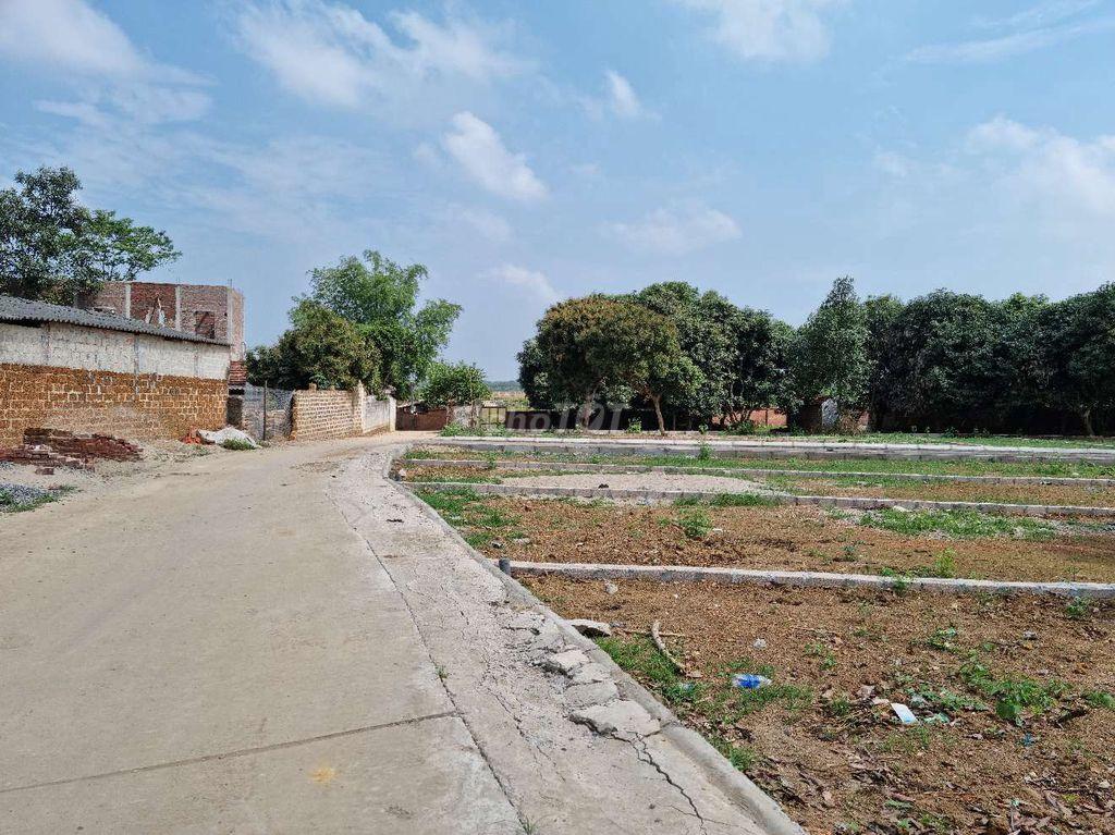 Kế hoạch sử dụng đất xã Mỹ Lương, Chương Mỹ, Hà Nội năm 2021 - Ảnh 1.