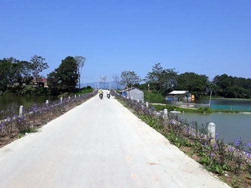 Kế hoạch sử dụng đất xã Thanh Bình, Chương Mỹ, Hà Nội năm 2021 - Ảnh 1.
