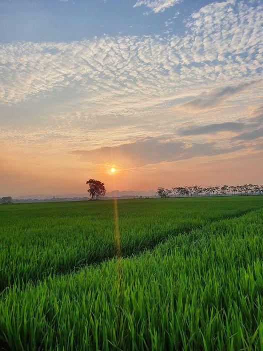 Kế hoạch sử dụng đất xã Phùng Xá, Mỹ Đức, Hà Nội năm 2021 - Ảnh 1.
