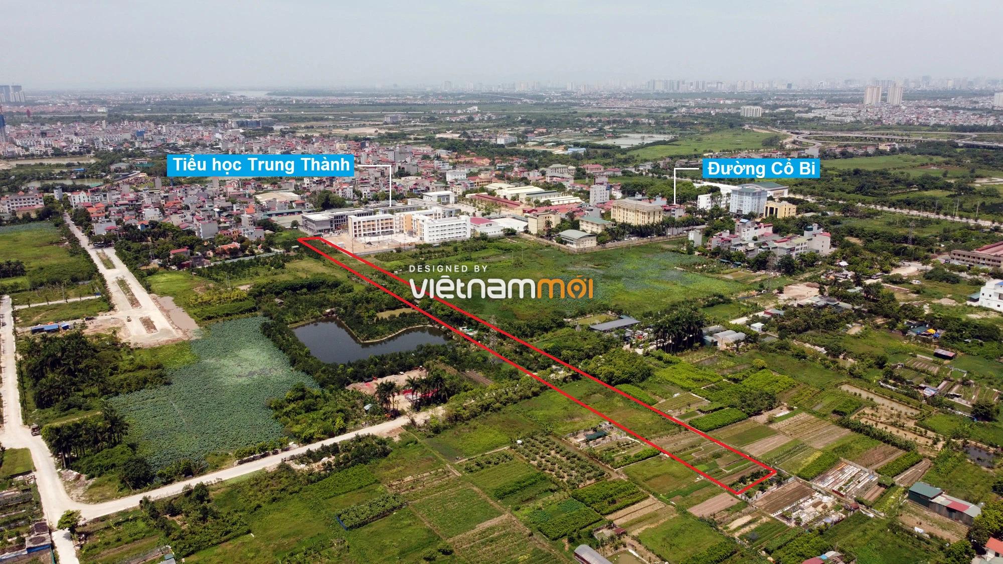 Đường sẽ mở theo quy hoạch ở xã Cổ Bi, Gia Lâm, Hà Nội (phần 2) - Ảnh 6.