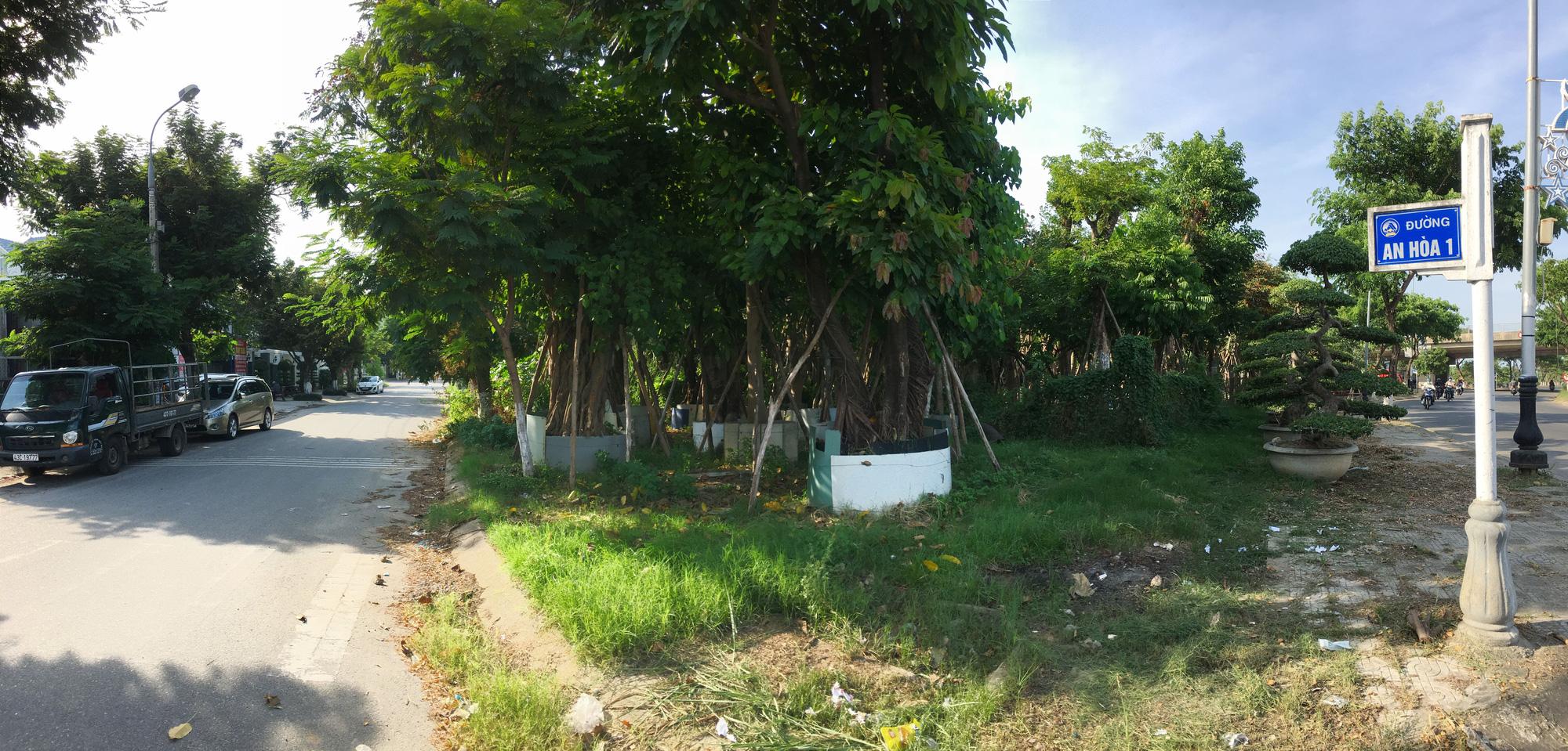 Cận cảnh hai khu đất ở quận Cẩm Lệ, Đà Nẵng sẽ đấu giá làm bãi đỗ xe - Ảnh 4.