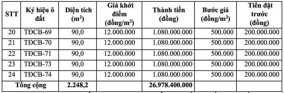 Phú Thọ sắp đấu giá 24 ô đất tại TP Việt Trì, giá khởi điểm 12 triệu đồng/m2 - Ảnh 2.