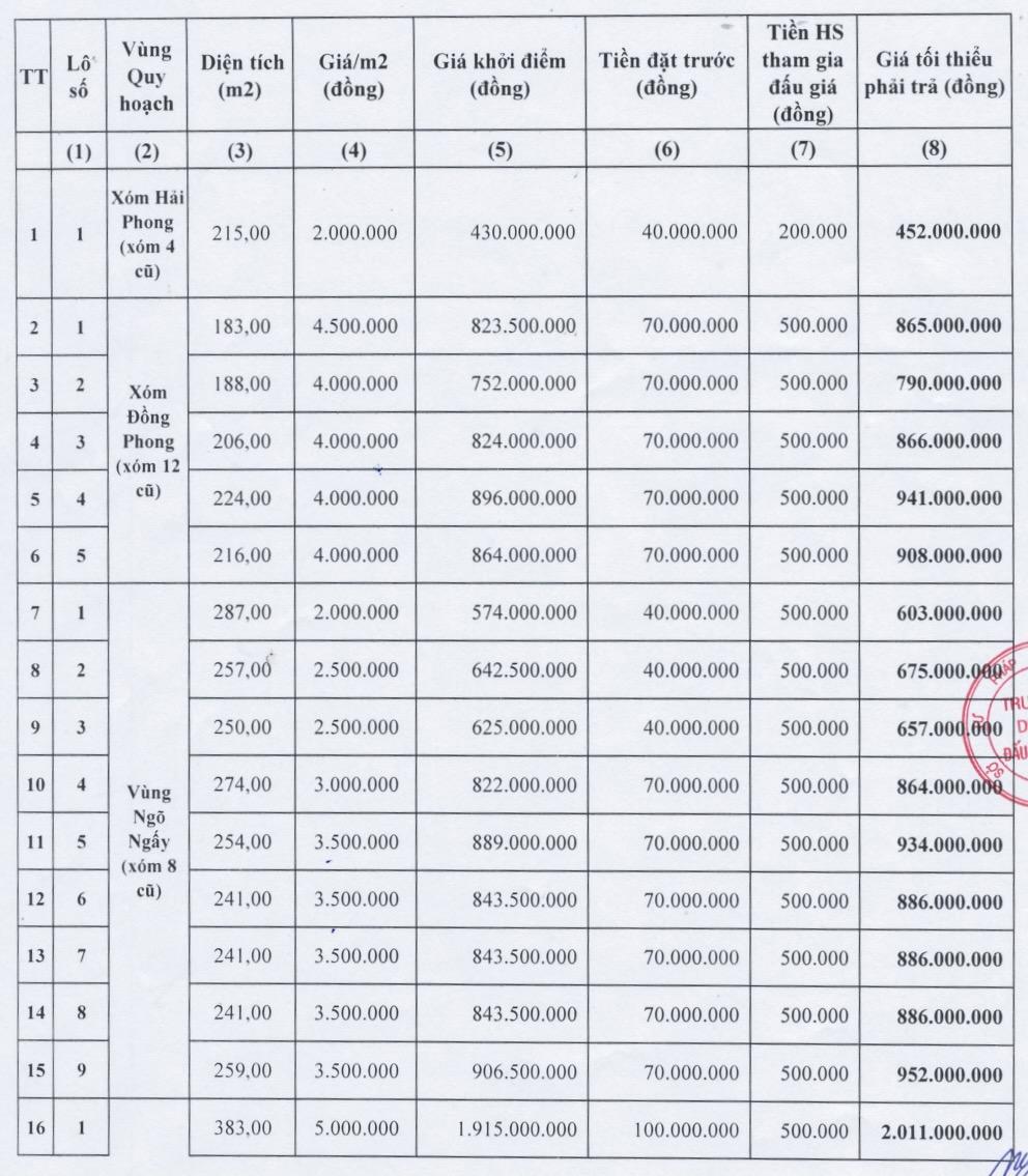 Nghệ An sắp đấu giá 30 lô đất quy hoạch tại huyện Nam Đàn, giá khởi điểm từ 2 triệu đồng/m2 - Ảnh 1.