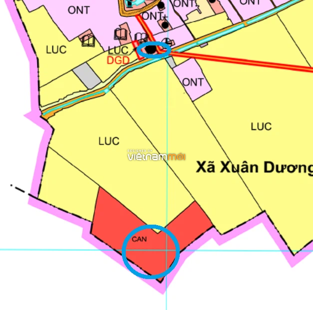 Đất dính quy hoạch ở xã Xuân Dương, Thanh Oai, Hà Nội - Ảnh 1.