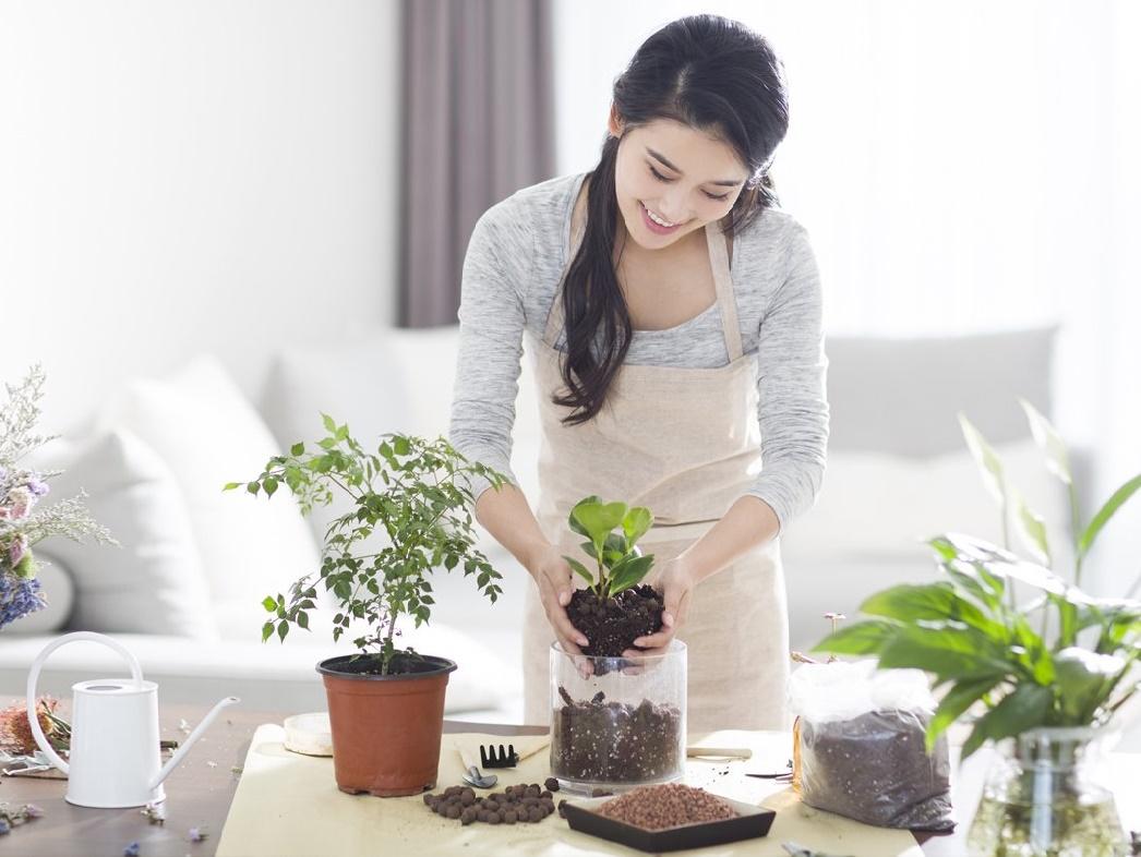 Bảo vệ sức khỏe mùa COVID qua 7 việc làm đơn giản tại nhà - Ảnh 7.