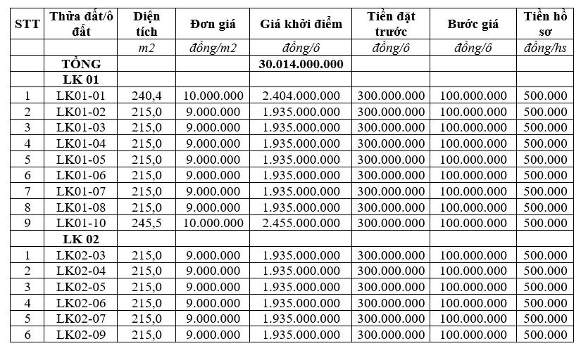 Thanh Thủy, Phú Thọ sắp đấu giá 15 lô đất trên đường 317, khởi điểm từ 9 triệu đồng/m2 - Ảnh 1.