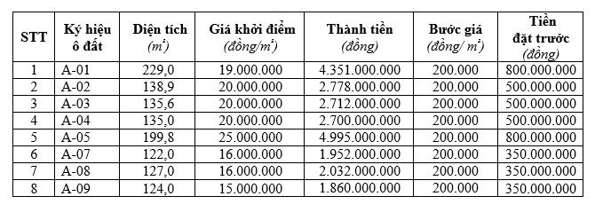 Phú Thọ đấu giá 8 lô đất tại thị trấn Yên Lập, khởi điểm 15 triệu đồng/m2 - Ảnh 1.