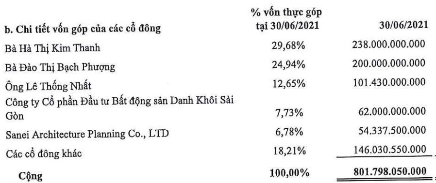 Tập đoàn Danh Khôi lỗ kỷ lục trong quý II, dự án Saigon Metro Mall chưa rõ ngày tái khởi động - Ảnh 4.
