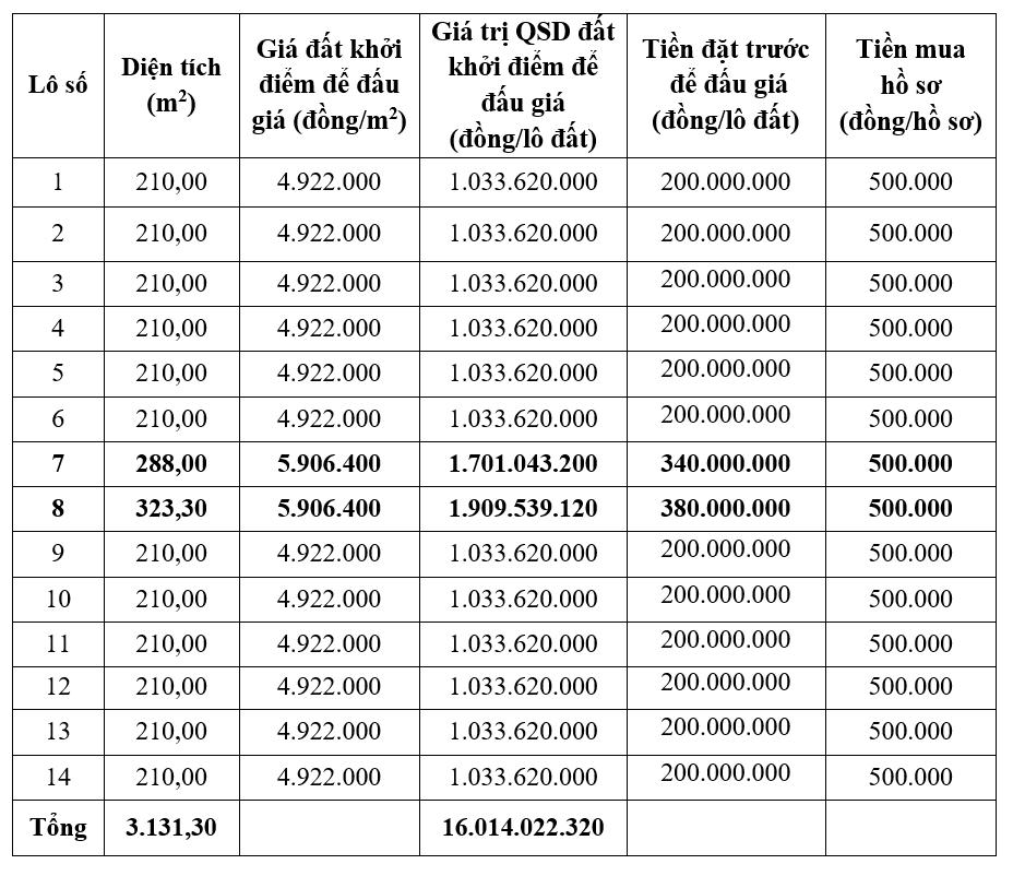 Thanh Hóa sắp đấu giá 14 lô đất khởi điểm 4,9 triệu đồng/m2 tại huyện Cẩm Thủy  - Ảnh 1.
