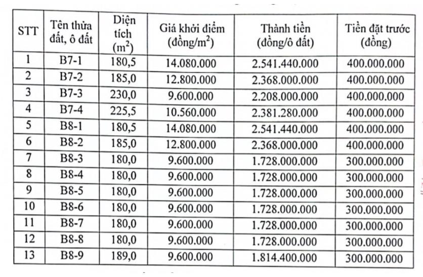 Việt Trì, Phú Thọ sắp đấu giá 13 lô đất, khởi điểm từ 9,6 triệu đồng/m2 - Ảnh 1.