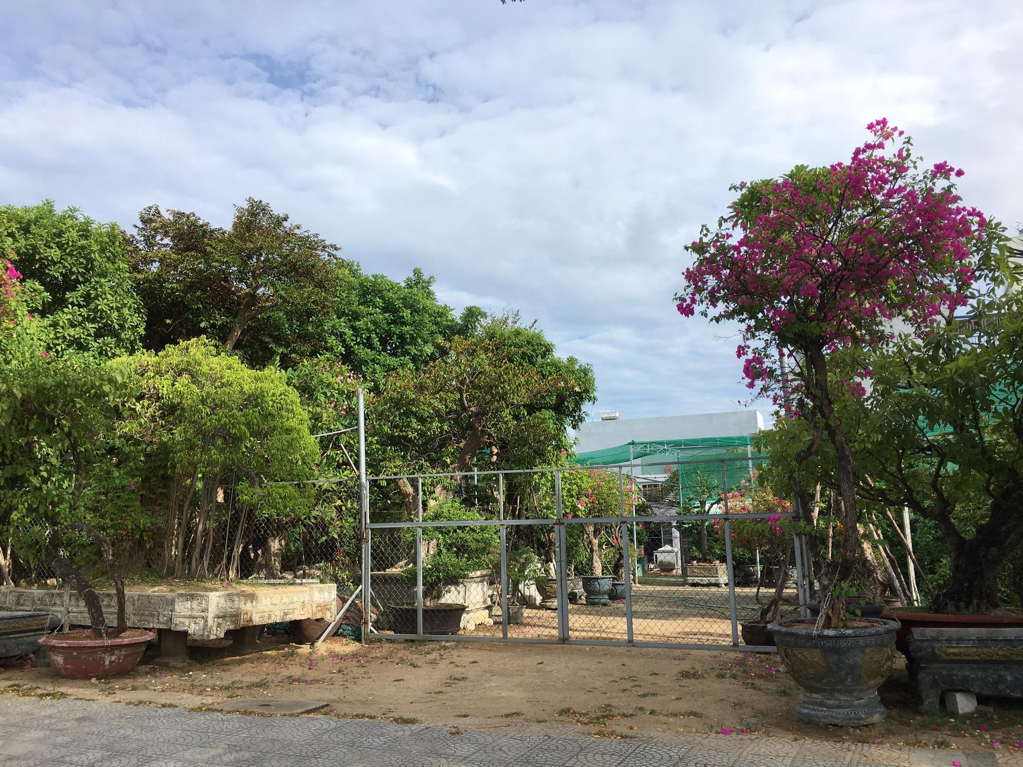 Cận cảnh hai khu đất mặt tiền đường Võ Văn Kiệt - Ngô Quyền, Đà Nẵng sẽ đấu giá xây dựng dự án cao 30 tầng - Ảnh 7.