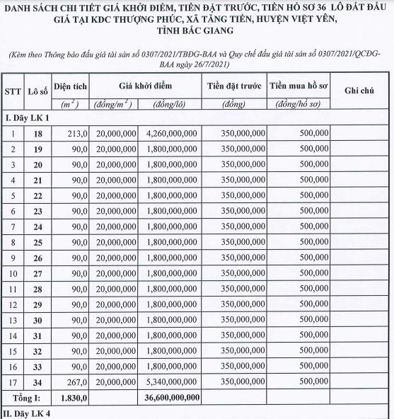 Đấu giá 36 lô đất ở tại Việt Yên, Bắc Giang, khởi điểm 18 triệu đồng/m2 - Ảnh 1.
