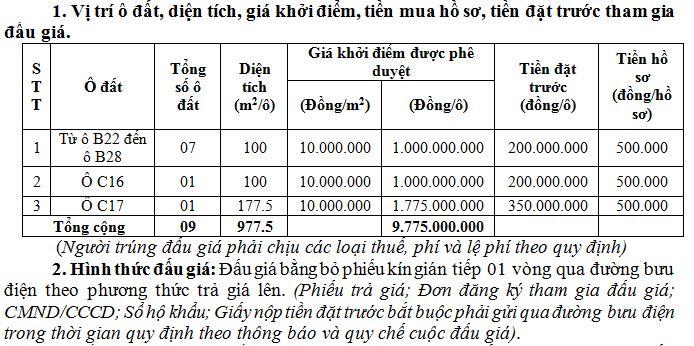 Bình Xuyên, Vĩnh Phúc sắp đấu giá 9 ô đất, khởi điểm từ 10 triệu đồng/m2 - Ảnh 1.