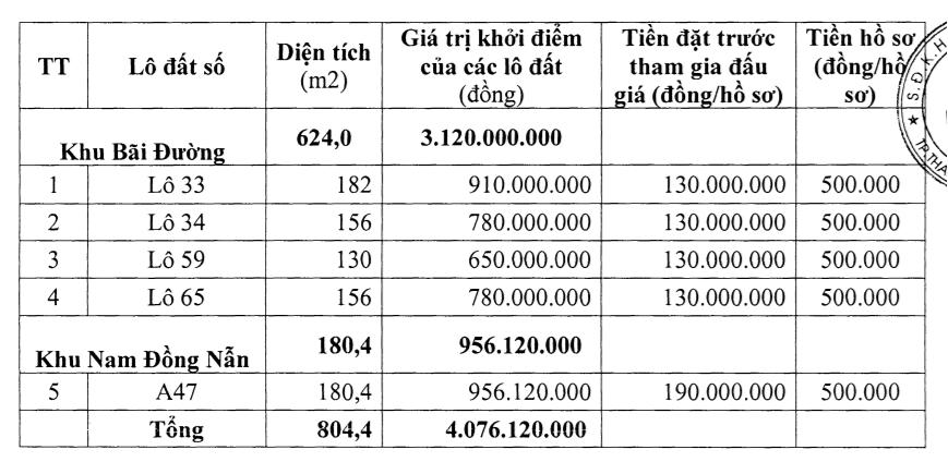 Thanh Hóa sắp đấu giá 12 lô đất tại Triệu Sơn, khởi điểm 650 triệu đồng/lô - Ảnh 1.