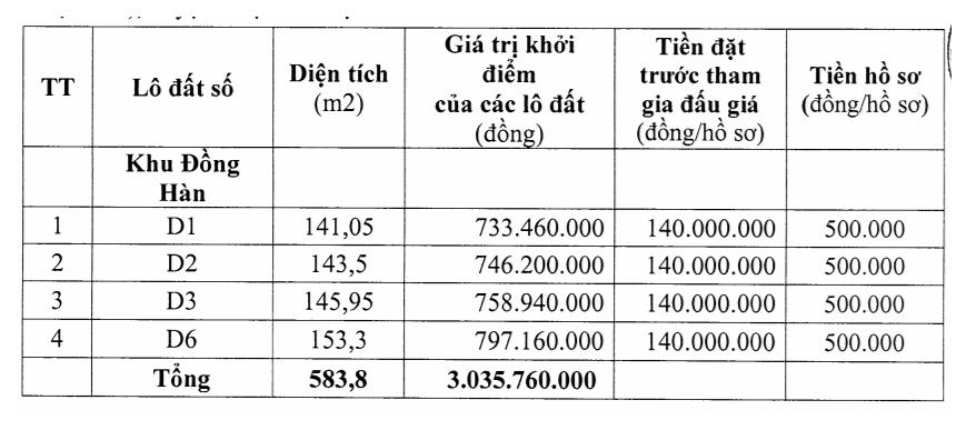 Thanh Hóa sắp đấu giá 12 lô đất tại Triệu Sơn, khởi điểm 650 triệu đồng/lô - Ảnh 2.