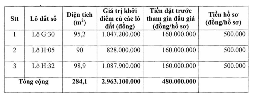 Thanh Hóa sắp đấu giá 12 lô đất tại Triệu Sơn, khởi điểm 650 triệu đồng/lô - Ảnh 3.