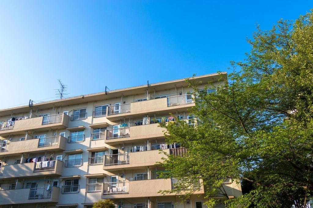 5 điều cần tìm hiểu khi mua chung cư mà các gia đình nên biết - Ảnh 2.