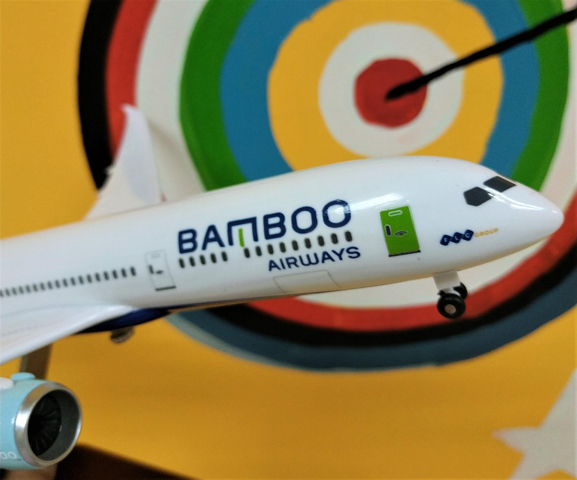 Doanh thu của FLC chủ yếu đến từ đâu khi không còn Bamboo Airways? - Ảnh 1.
