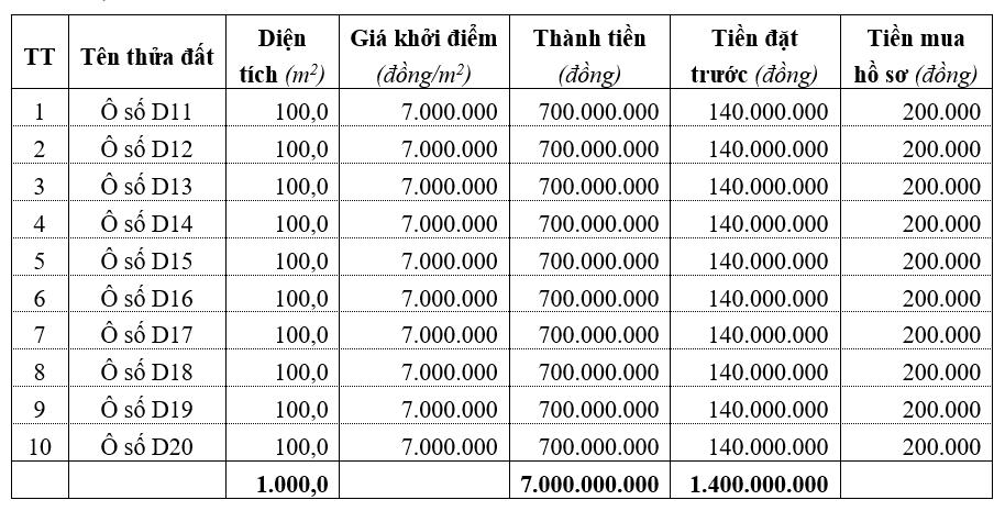 Phú Thọ đấu giá 10 lô đất tại Tân Sơn, khởi điểm 7 triệu đồng/m2 - Ảnh 1.