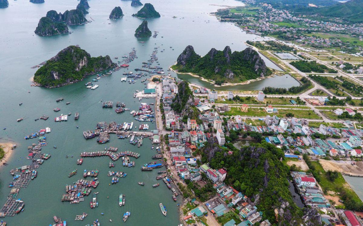 21/36 dự án đầu tư công tại Vân Đồn, Quảng Ninh vướng mặt bằng, giải ngân thấp - Ảnh 1.