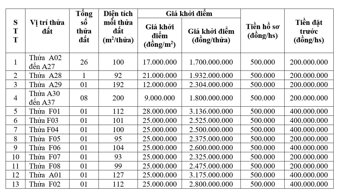 Vĩnh Phúc đấu giá 45 lô đất tại thị trấn Lập Thạch, khởi điểm từ 9 triệu đồng/m2 - Ảnh 1.