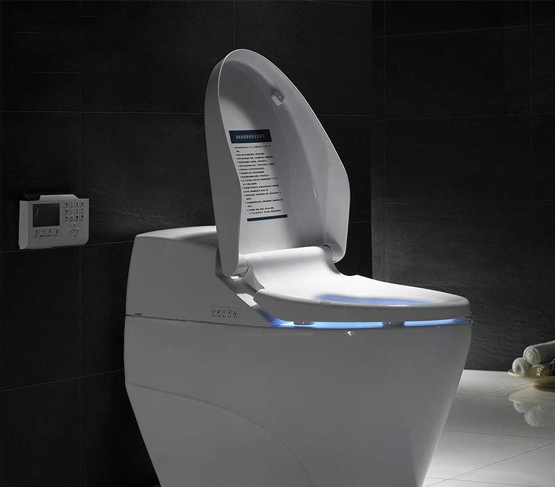 Top 5 phụ kiện nhà tắm thông minh cho một cuộc sống hiện đại - Ảnh 1.