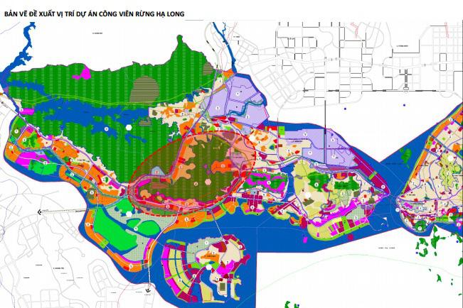 Vingroup đề xuất làm công viên rừng quy mô 650 ha tại TP Hạ Long