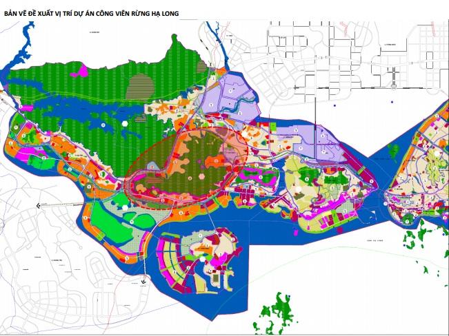 Vingroup đề xuất làm công viên rừng quy mô 650 ha tại TP Hạ Long - Ảnh 1.