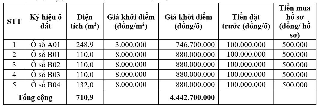 Phú Thọ sắp đấu giá 9 ô đất tại huyện Cẩm Khê, khởi điểm từ 847 triệu đồng/ô - Ảnh 2.