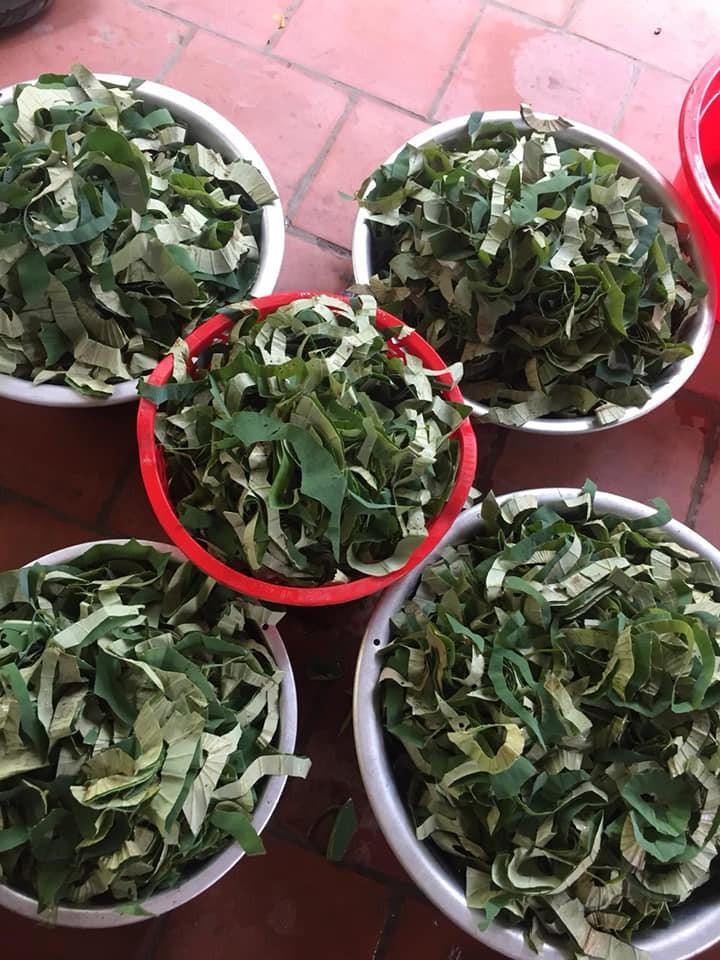 Loại lá mọc tràn ao bùn Việt Nam, 400.000 đồng/kg, chị em ưa dùng để giữ eo - Ảnh 2.