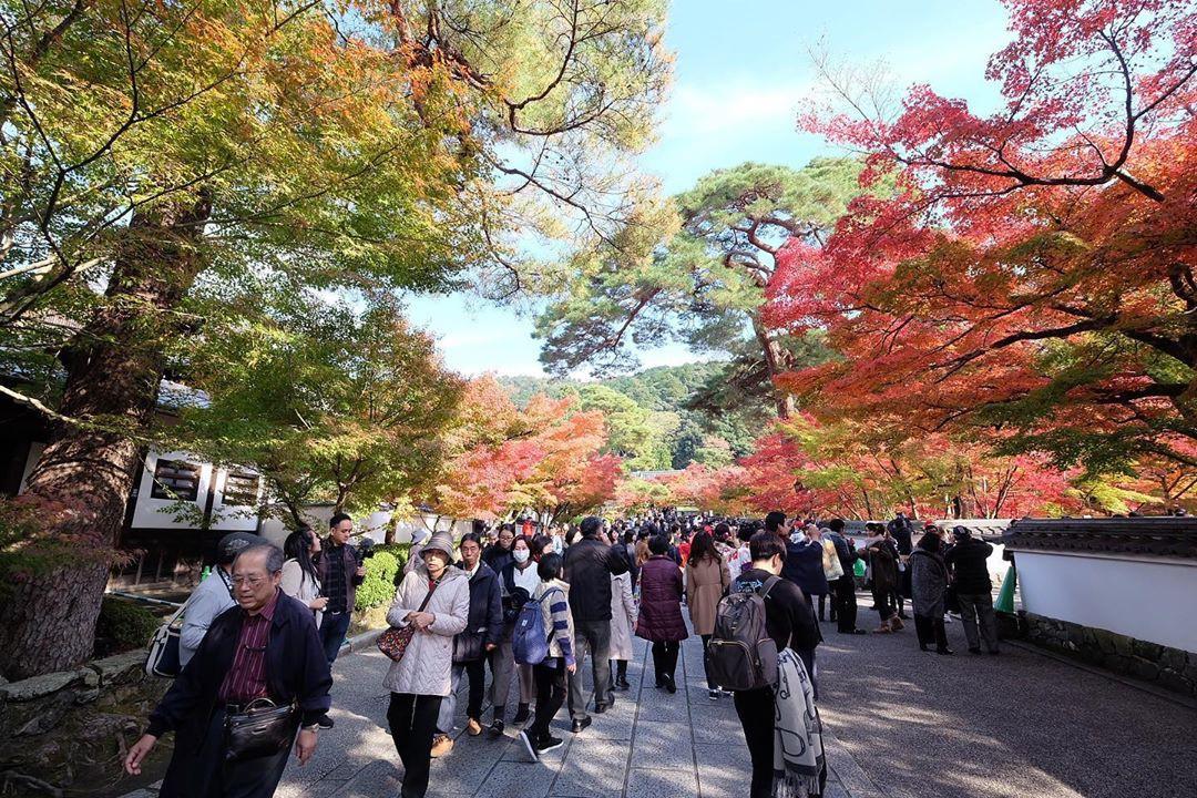7 điểm ngắm lá mùa thu đẹp nhất Nhật Bản - Ảnh 1.