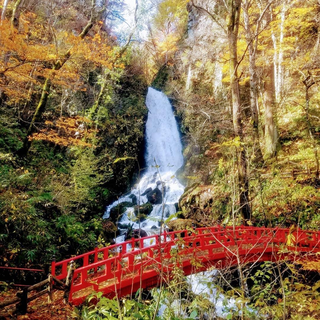 7 điểm ngắm lá mùa thu đẹp nhất Nhật Bản - Ảnh 14.