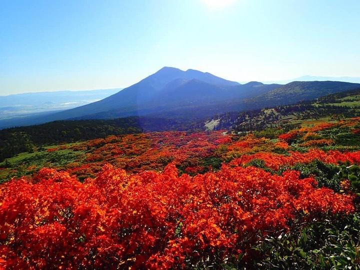 7 điểm ngắm lá mùa thu đẹp nhất Nhật Bản - Ảnh 15.