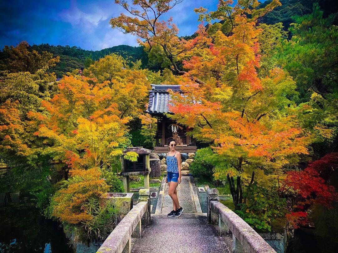 7 điểm ngắm lá mùa thu đẹp nhất Nhật Bản - Ảnh 2.