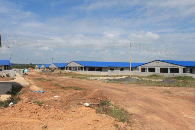 Trại heo 'khủng' đang thành hình gần nguồn cấp nước sạch cho TP HCM và Đồng Nai - Ảnh 1.