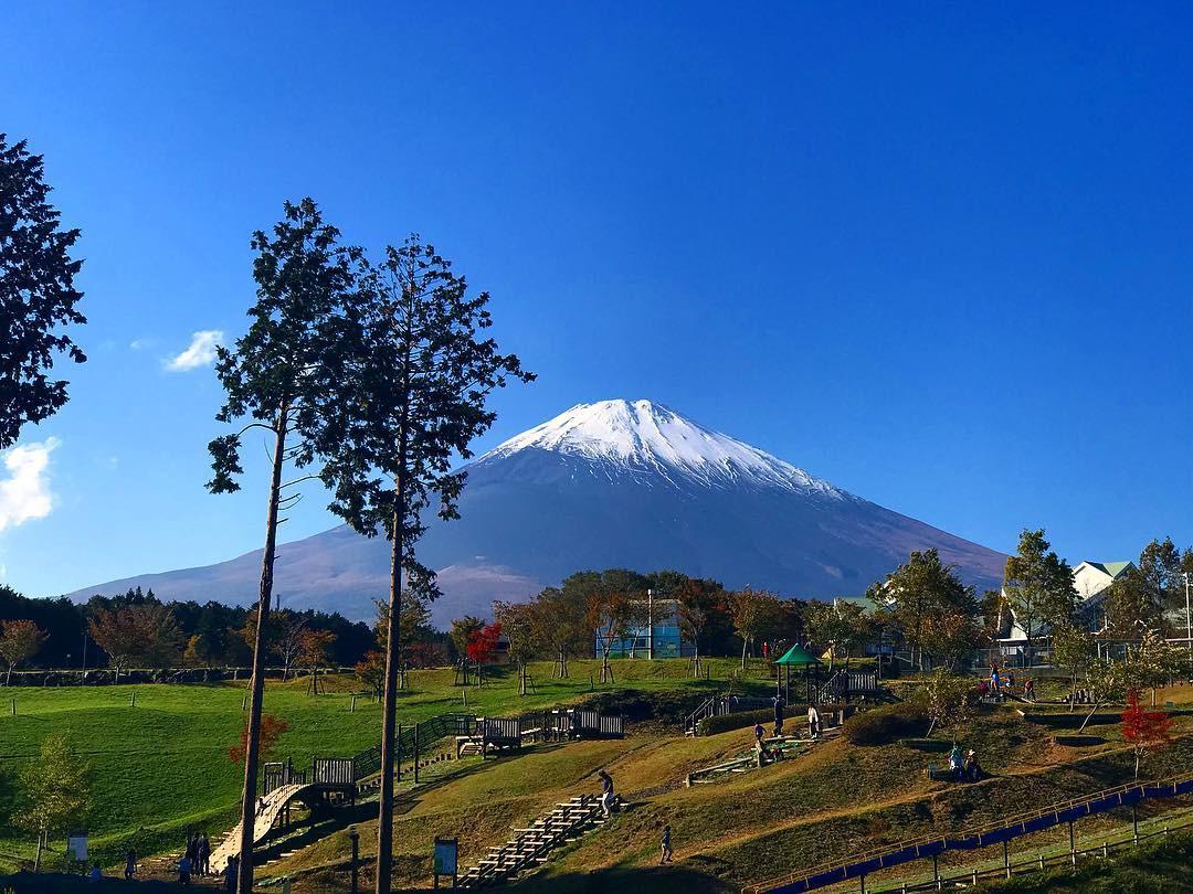 So sánh tour du lịch 5 ngày 4 đêm ngắm lá mùa thu tại Nhật Bản - Ảnh 2.