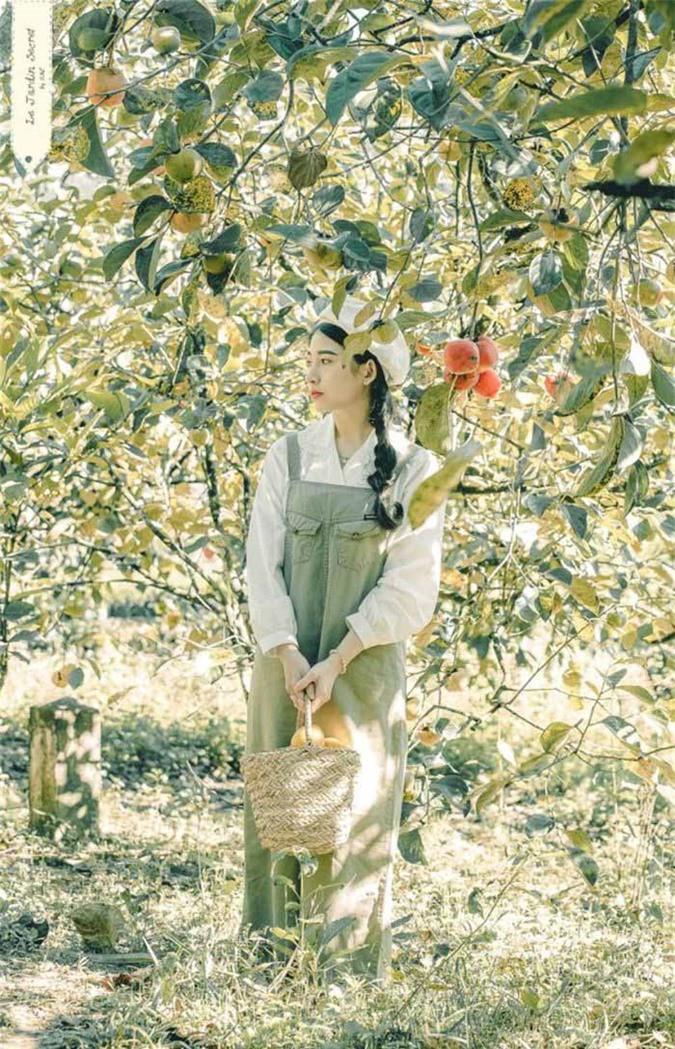 Mùa này đừng quên check-in vườn hồng chín đỏ mọng tuyệt đẹp ở Đà Lạt - Ảnh 2.