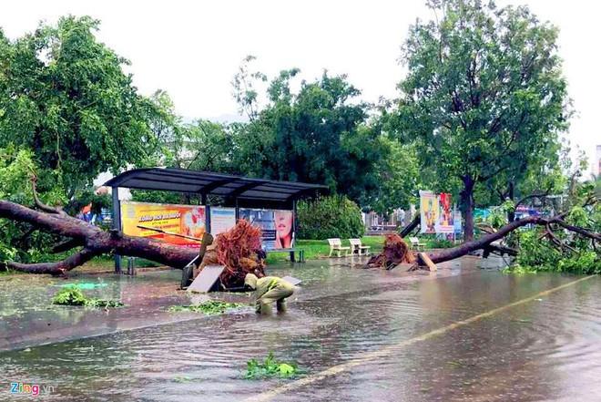 Gần 1 triệu hộ dân miền Trung mất điện do mưa bão - Ảnh 1.