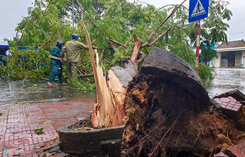 Xác xơ sau bão, Bình Định ban bố tình trạng khẩn cấp - Ảnh 11.