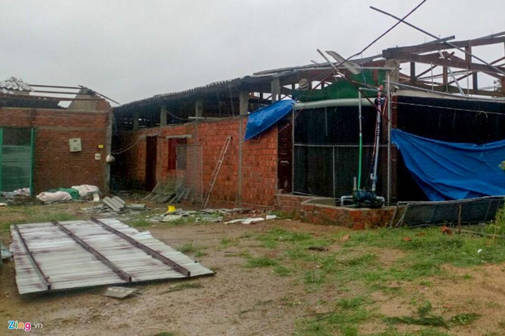 Xác xơ sau bão, Bình Định ban bố tình trạng khẩn cấp - Ảnh 4.