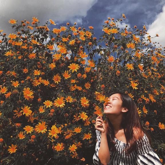 Dinh vi 9 cung duong san hoa da quy o Da Lat hinh anh 2