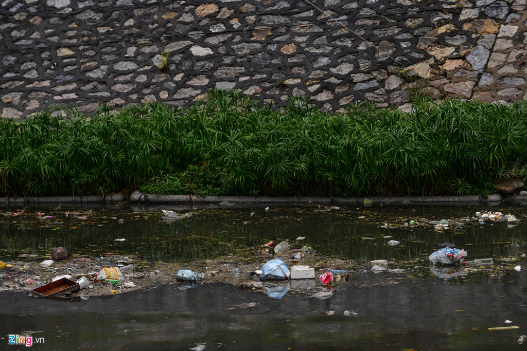 Rác nổi lềnh bềnh mặt sông Tô Lịch sau mưa - Ảnh 8.