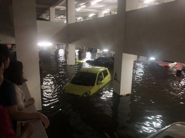 Đà Nẵng cảnh báo các chung cư di tản ô tô, đề phòng ngập nặng - Ảnh 1.
