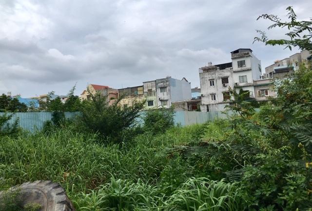 Dự án Đức Long Western Park: Cấp phép 15 tầng, môi giới rao bán đến tầng 21 - Ảnh 3.