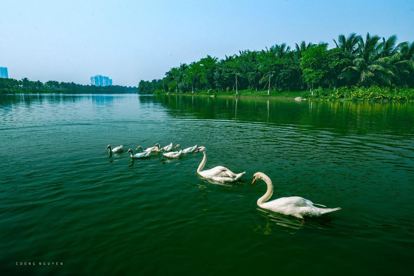 Khám phá vẻ đẹp bền vững tại những căn biệt thự đảo triệu đô Ecopark - Ảnh 1.